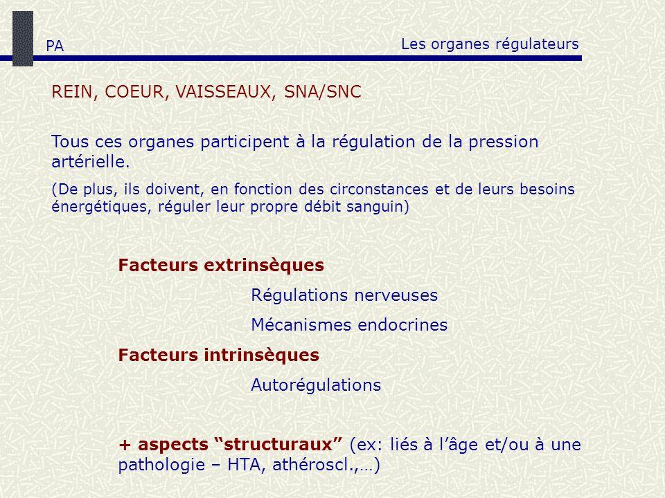 Les organes régulateurs REIN, COEUR, VAISSEAUX, SNA/SNC Tous ces organes participent à la régulation de la pression artérielle. (De plus, ils doivent,
