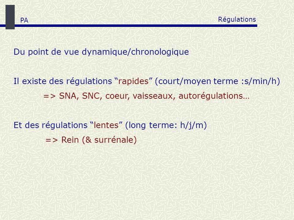 Régulations Du point de vue dynamique/chronologique Il existe des régulations rapides (court/moyen terme :s/min/h) => SNA, SNC, coeur, vaisseaux, auto