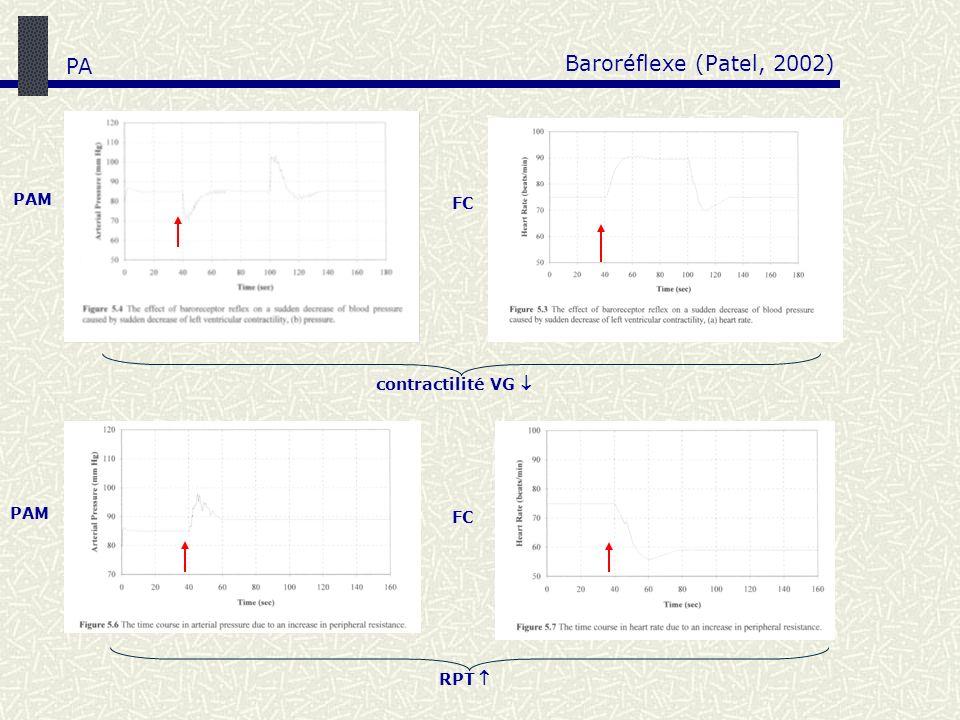 contractilité VG PAM FC RPT Baroréflexe (Patel, 2002) PA
