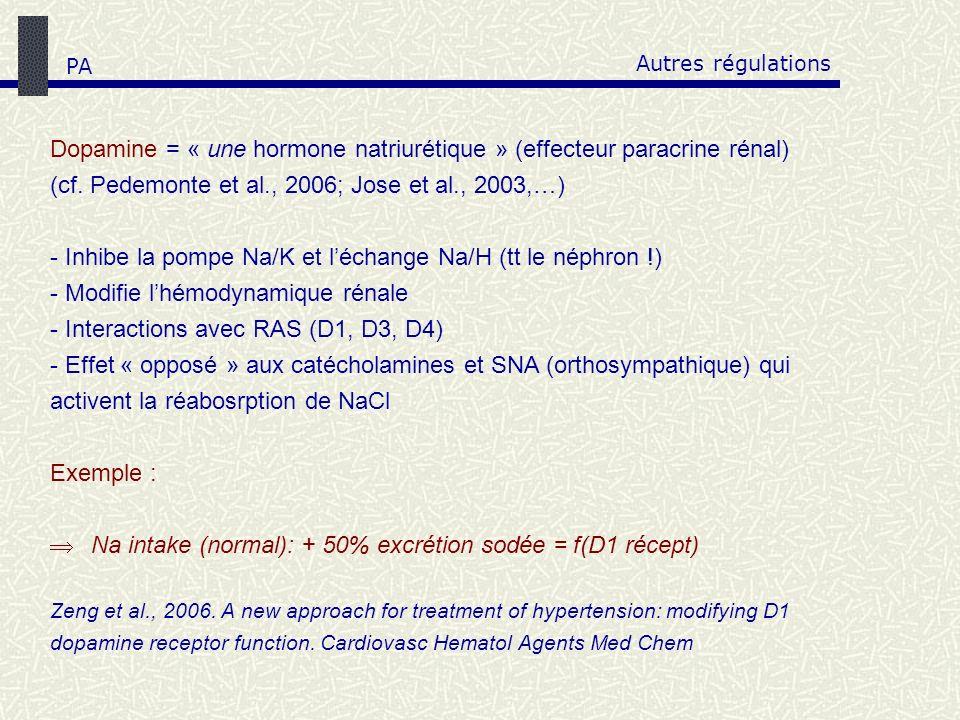 Autres régulations Dopamine = « une hormone natriurétique » (effecteur paracrine rénal) (cf. Pedemonte et al., 2006; Jose et al., 2003,…) - Inhibe la