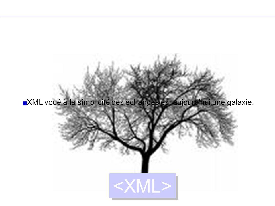 coexistence des espaces de noms <library xmlns= http://dyomedea.com/ns/library xmlns:mkt= http://dyomedea.com/ns/library/mkt > Being a Dog Is a Full-Time Job Charles M Schulz Paperback 128 XML sert de glue entre applications, et les espaces de noms ont été créés pour faire cohabiter différents vocabulaires.