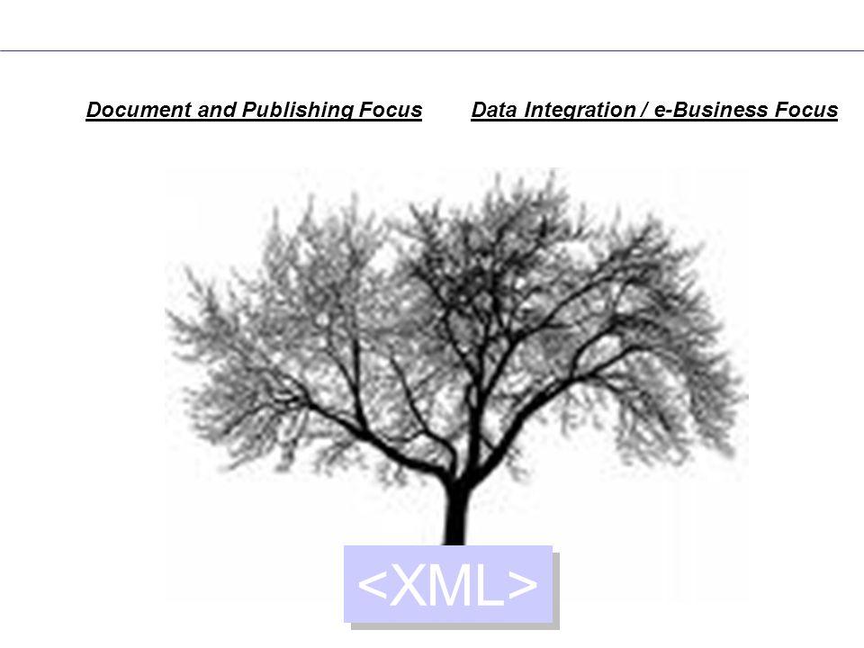 XSL-FO SOA and Web Services Application Integration Flexible Data Interchange Document and Publishing Focus Data Integration / e-Business Focus X Query DTDs Schemas XSLT SVG EXI SOAP RelaxNG