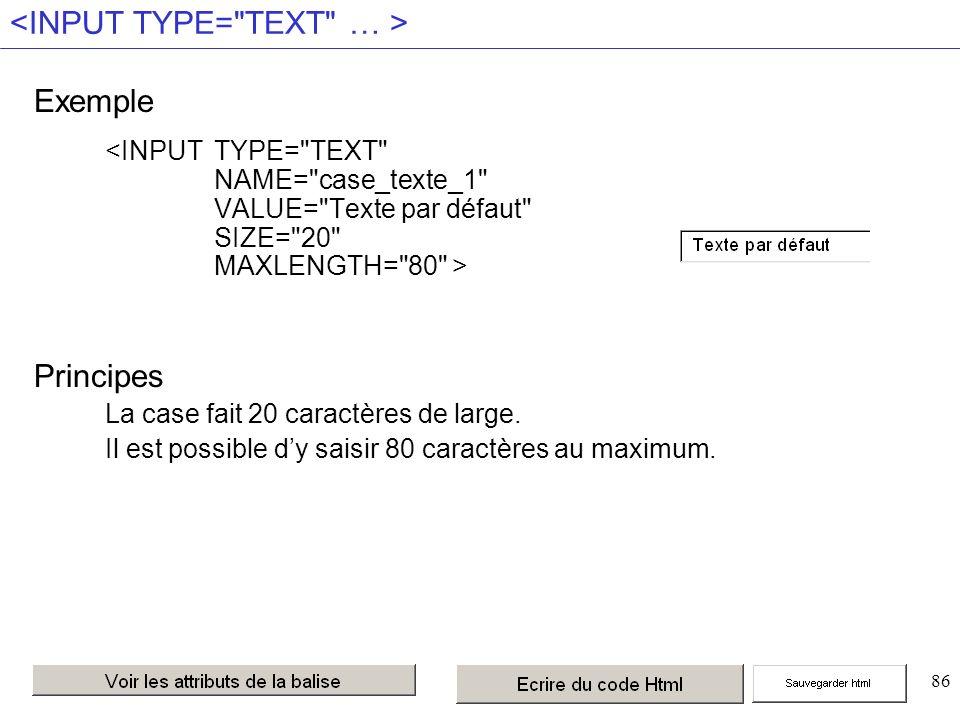 86 Exemple Principes La case fait 20 caractères de large.