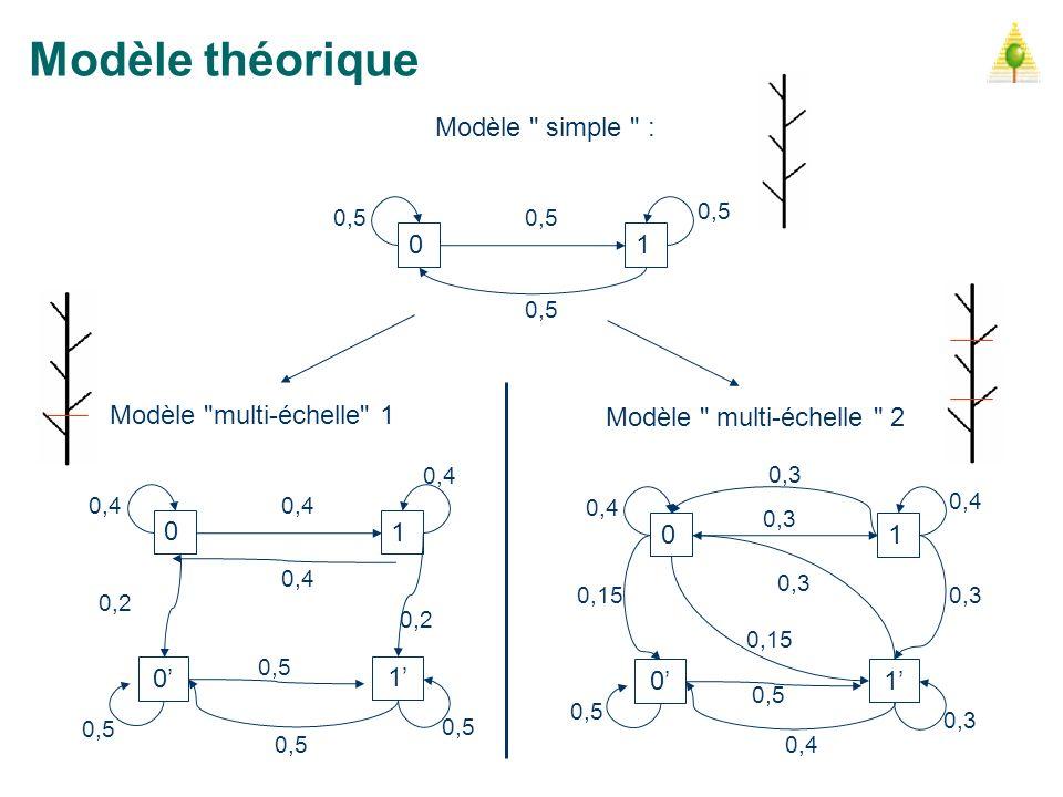Modèle théorique Modèle