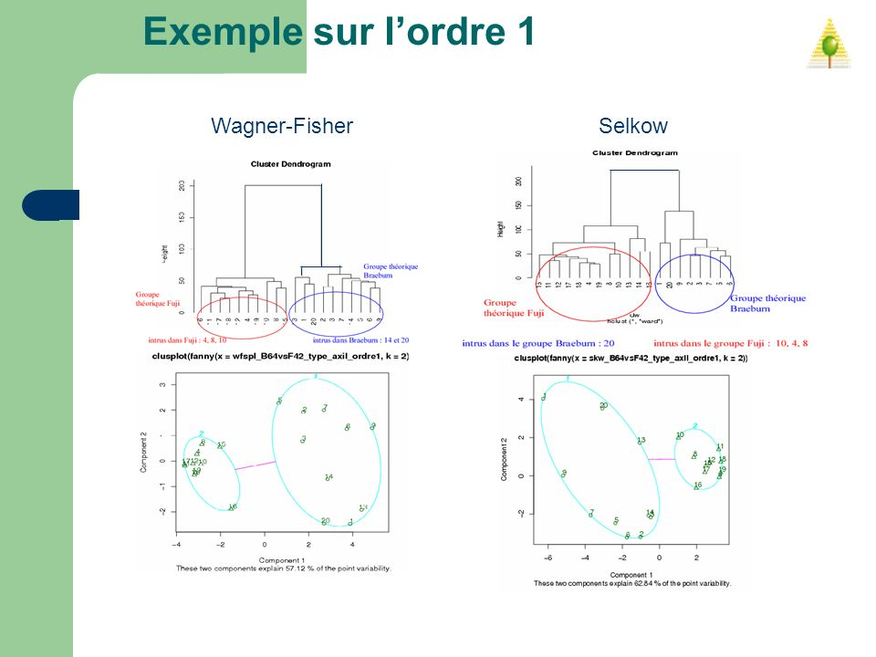Exemple sur lordre 1 Wagner-FisherSelkow