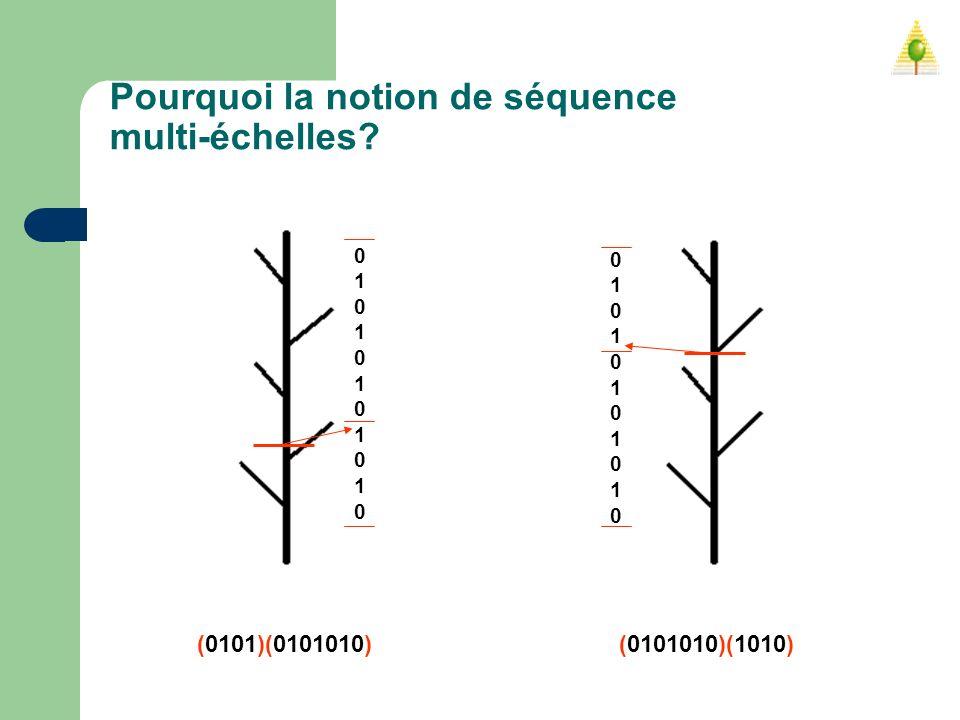 Pourquoi la notion de séquence multi-échelles? 0101010101001010101010 0101010101001010101010 (0101)(0101010) (0101010)(1010)