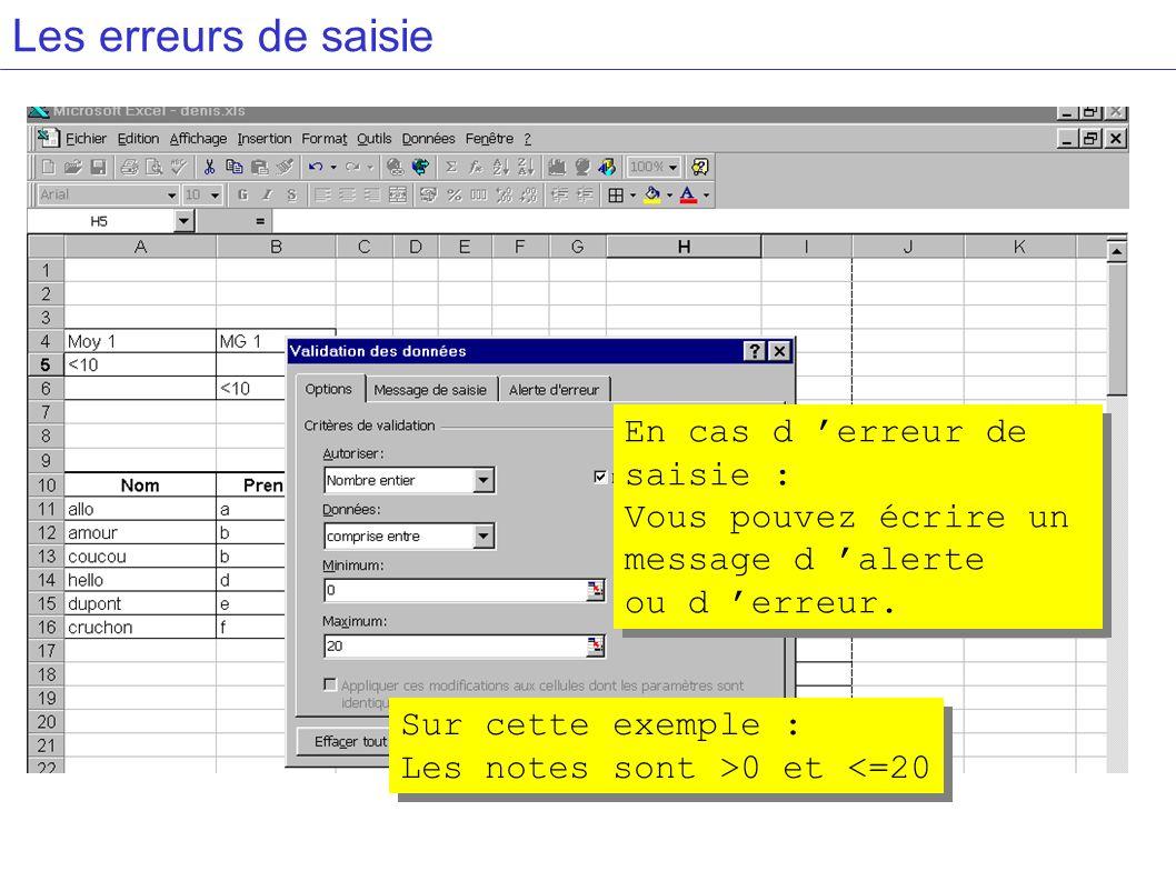 Les erreurs de saisie En cas d erreur de saisie : Vous pouvez écrire un message d alerte ou d erreur.