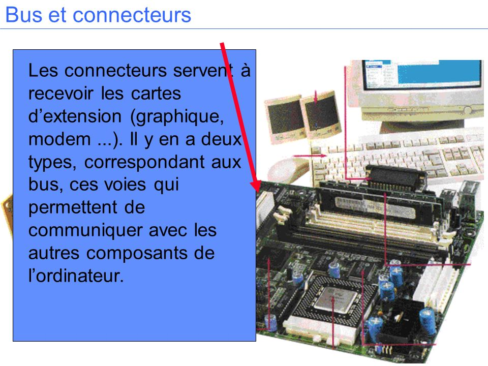 Les connecteurs servent à recevoir les cartes dextension (graphique, modem...). Il y en a deux types, correspondant aux bus, ces voies qui permettent