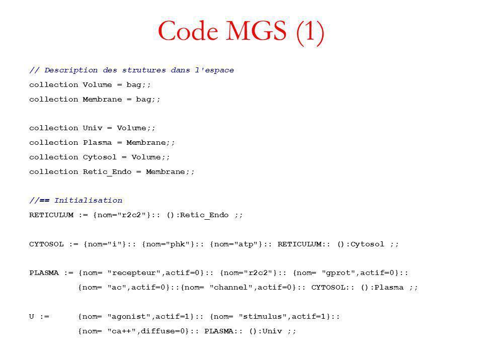 Code MGS (1) // Description des strutures dans l espace collection Volume = bag;; collection Membrane = bag;; collection Univ = Volume;; collection Plasma = Membrane;; collection Cytosol = Volume;; collection Retic_Endo = Membrane;; //== Initialisation RETICULUM := {nom= r2c2 }:: ():Retic_Endo ;; CYTOSOL := {nom= i }:: {nom= phk }:: {nom= atp }:: RETICULUM:: ():Cytosol ;; PLASMA := {nom= recepteur ,actif=0}:: {nom= r2c2 }:: {nom= gprot ,actif=0}:: {nom= ac ,actif=0}::{nom= channel ,actif=0}:: CYTOSOL:: ():Plasma ;; U := {nom= agonist ,actif=1}:: {nom= stimulus ,actif=1}:: {nom= ca++ ,diffuse=0}:: PLASMA:: ():Univ ;;