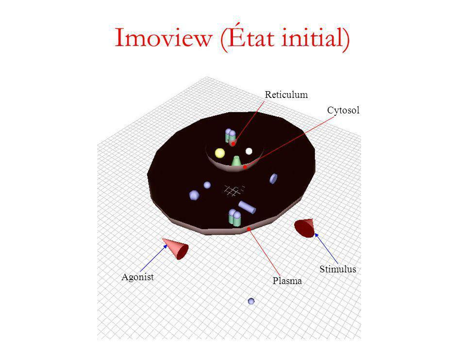 Imoview (État initial) Stimulus Agonist Plasma Cytosol Reticulum
