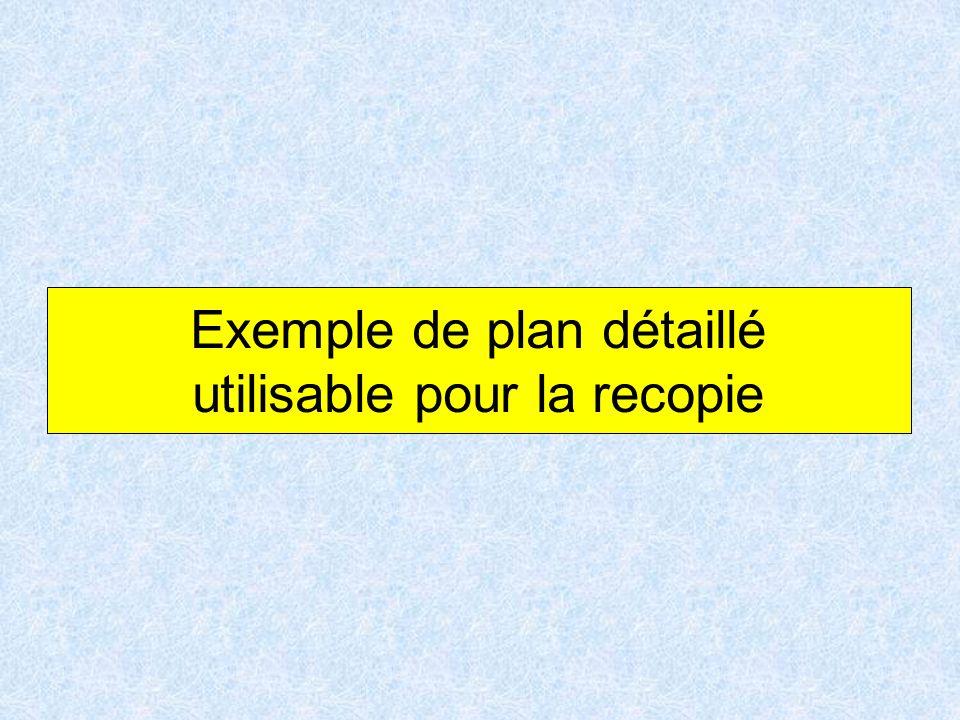 Exemple de plan détaillé utilisable pour la recopie