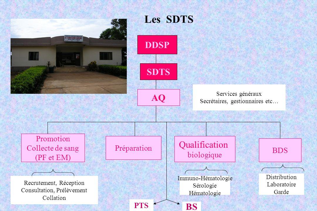 Les SDTS DDSP SDTS AQ Promotion Collecte de sang (PF et EM) Préparation Qualification biologique BDS Services généraux Secrétaires, gestionnaires etc…