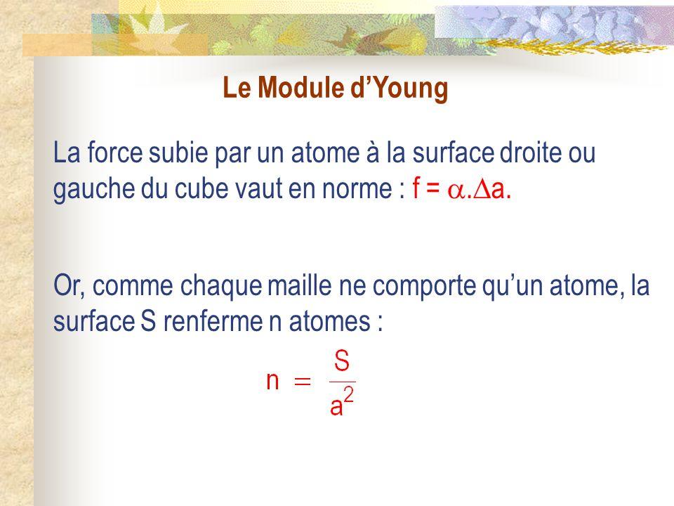 Le Module dYoung La force subie par un atome à la surface droite ou gauche du cube vaut en norme : f =.