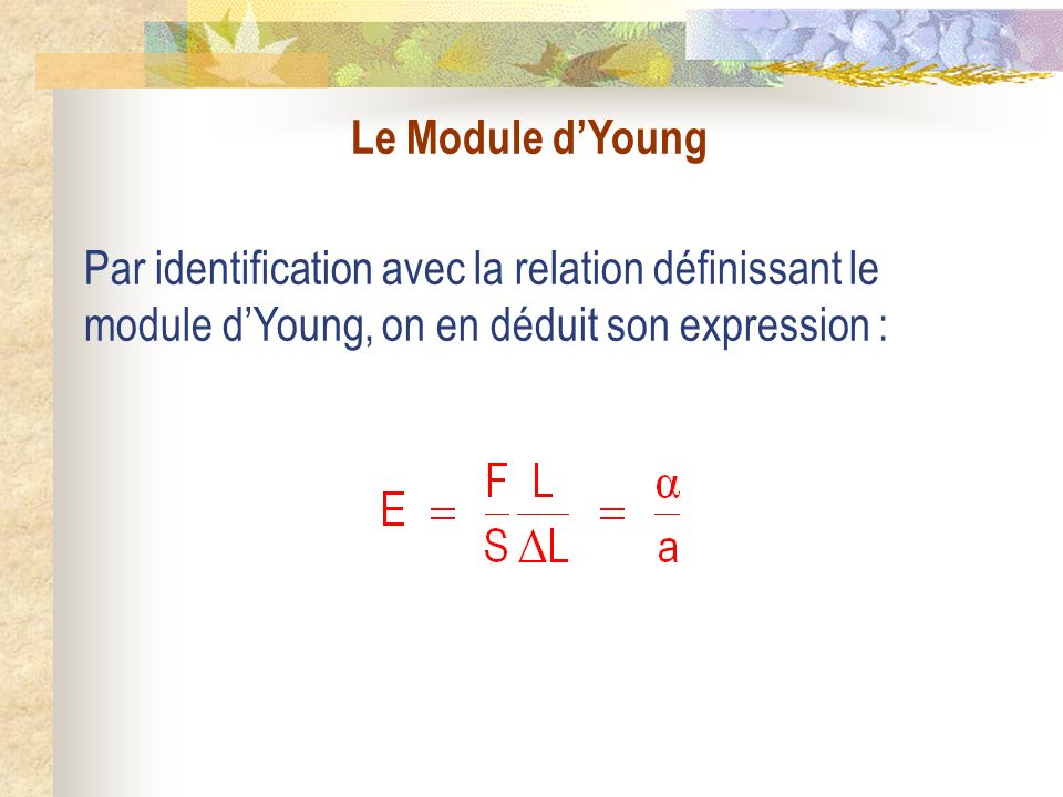 Le Module dYoung Par identification avec la relation définissant le module dYoung, on en déduit son expression :