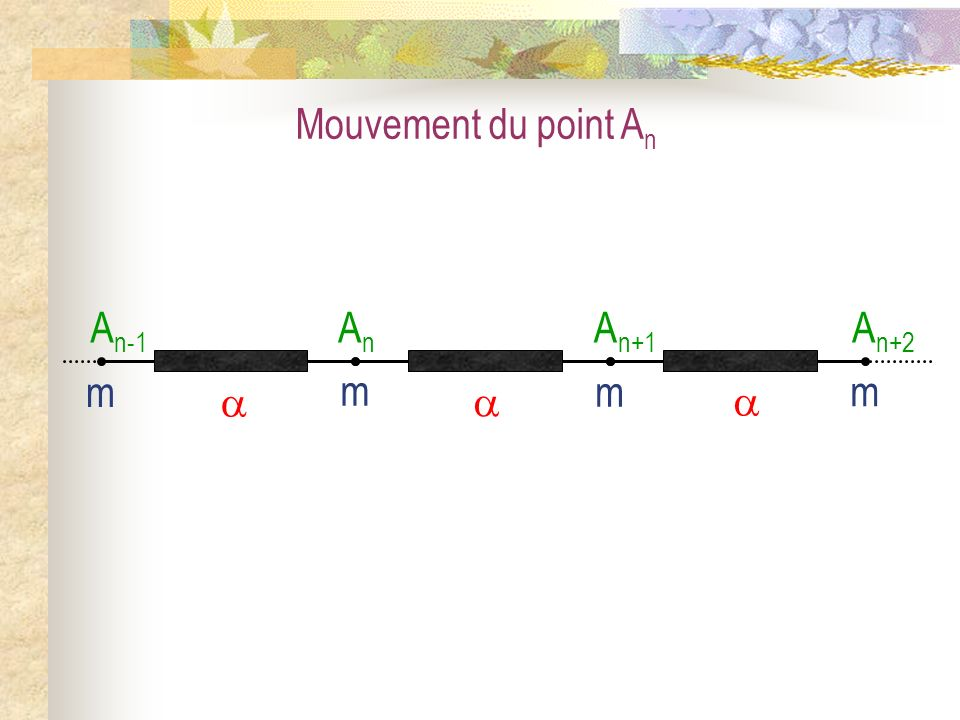 Système : latome A n de masse m et de rang n Référentiel : Terrestre supposé galiléen Forces : le poids P n, la réaction R n, la tension du ressort de gauche T n-1, la tension du ressort de droite T n+1.