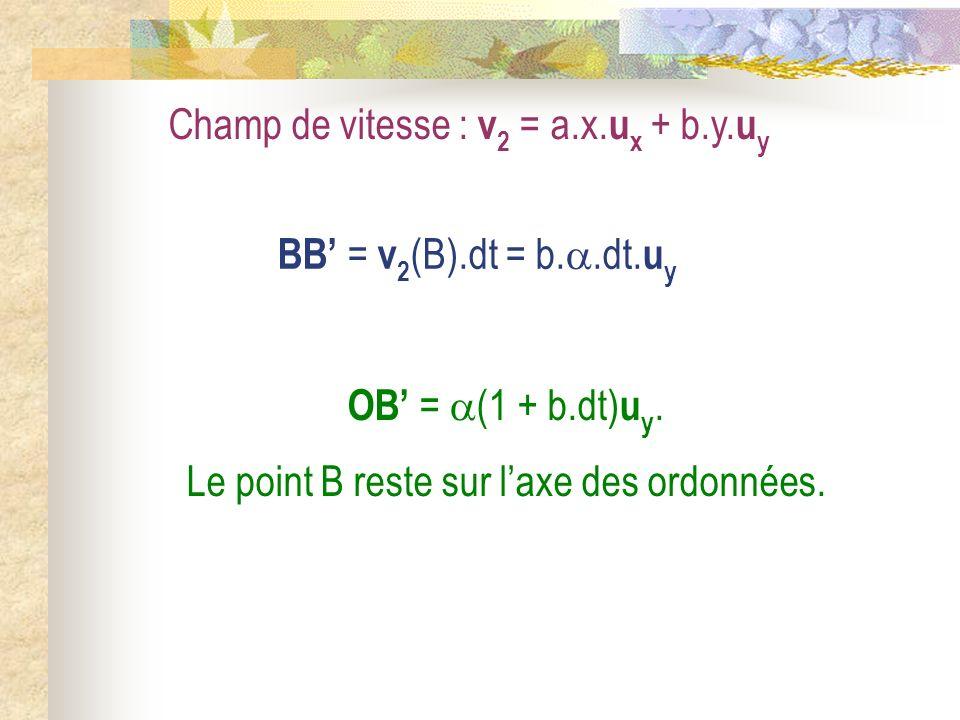 Champ de vitesse : v 2 = a.x. u x + b.y. u y BB = v 2 (B).dt = b..dt. u y OB = (1 + b.dt) u y. Le point B reste sur laxe des ordonnées.
