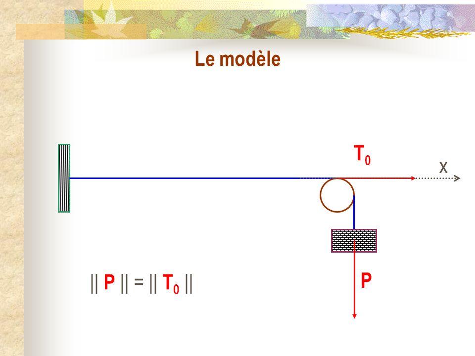 Le modèle y x T d (x,t) T g (x,t) M x y(x,t) (x,t)