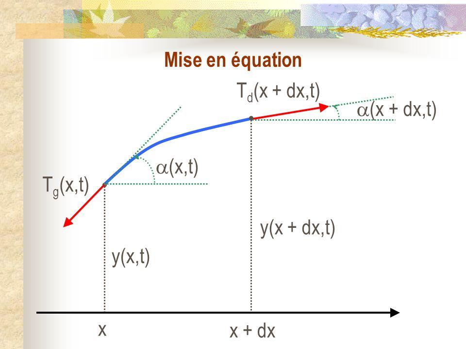 Système : un brin élémentaire de corde, de masse dm constante, compris entre les abscisses x et x + dx, de longueur au repos dx, dm =.dx Référentiel : Terrestre supposé galiléen Forces : la tension T g (x) exercée par la partie gauche de la corde en x ; la tension T d (x + dx) exercée par la partie droite de la corde en x + dx.