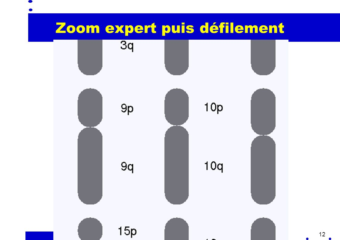12 Zoom expert puis défilement i3: The second (and last) video will show a control menu used to pan an application and the use of the control menu by someone who knows the location of the difference menu items.