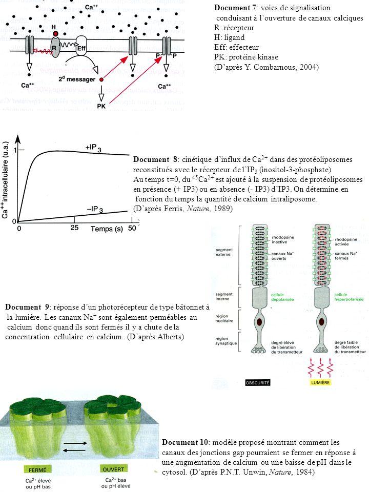 Document 7: voies de signalisation conduisant à louverture de canaux calciques R: récepteur H: ligand Eff: effecteur PK: protéine kinase (Daprès Y. Co