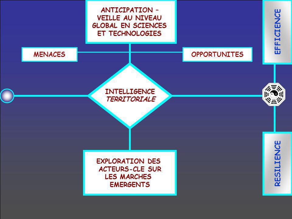 EFFICIENCE RESILIENCE ANTICIPATIN – ANTICIPATION – VEILLE AU NIVEAU GLOBAL EN SCIENCES ET TECHNOLOGIES EXPLORATION DES ACTEURS-CLE SUR LES MARCHES EME