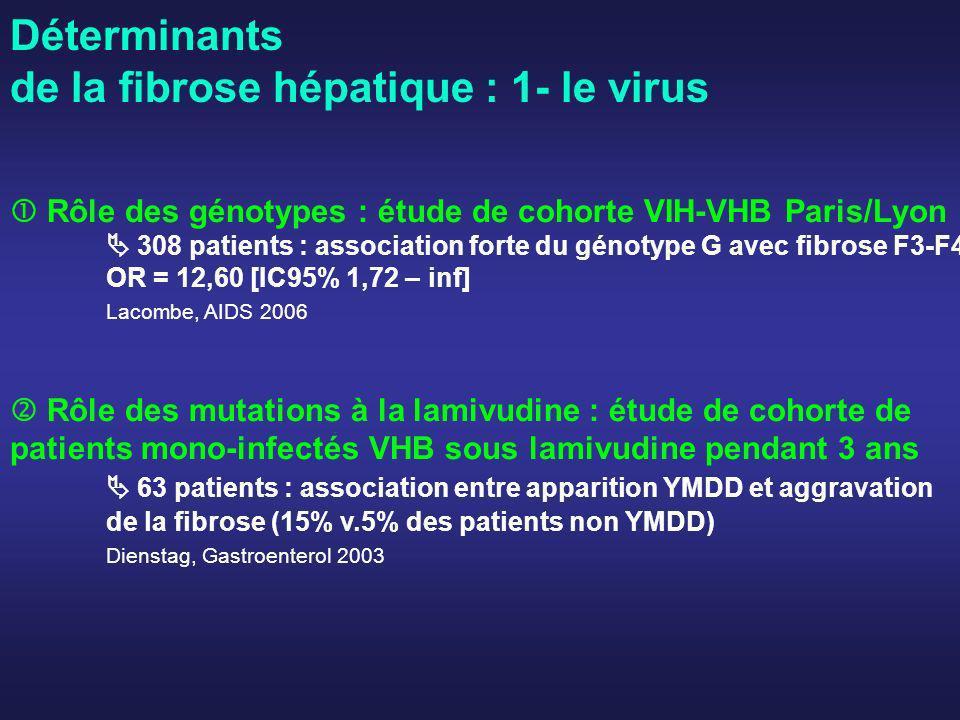 Déterminants de la fibrose hépatique : 1- le virus Rôle des génotypes : étude de cohorte VIH-VHB Paris/Lyon 308 patients : association forte du génoty