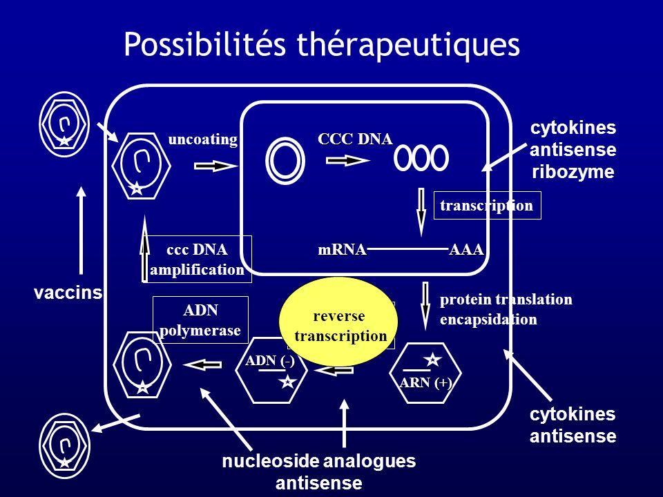 Traitement Anti VHB Interferon alfa-2bHBVe+/e- LamivudineHBV/HIVe+/e- Adefovir dipivoxilHBVe+/e-/lam-R EntecavirHBV (HIV?)e+/e-/lam-R Peg IFN alfa-2aHBV (HIV?)e+/e-/lam-R TelbivudineHBVe+/e- TenofovirHIV/HBVe+/e-/lam-R EmtricitabineHIV/HBVe+/e-