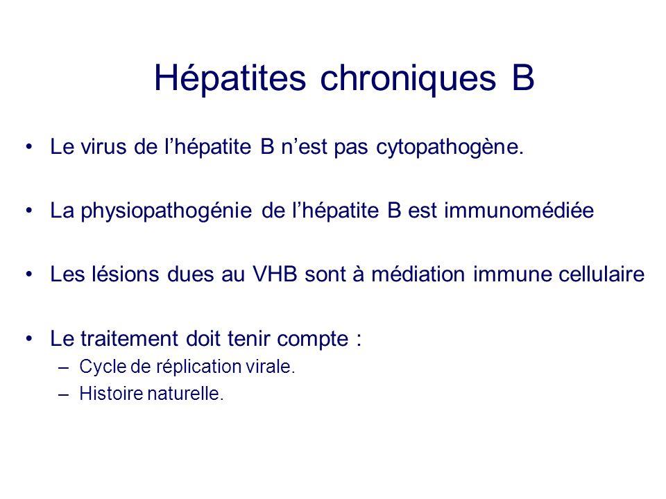 Hépatites chroniques B Le virus de lhépatite B nest pas cytopathogène. La physiopathogénie de lhépatite B est immunomédiée Les lésions dues au VHB son