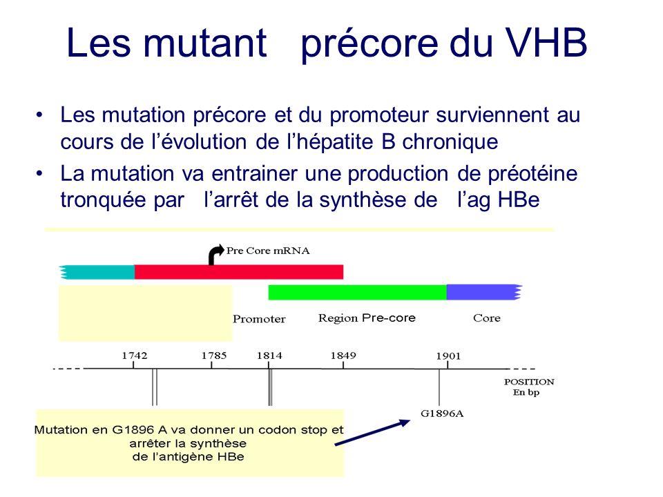 Les mutant précore du VHB Les mutation précore et du promoteur surviennent au cours de lévolution de lhépatite B chronique La mutation va entrainer un