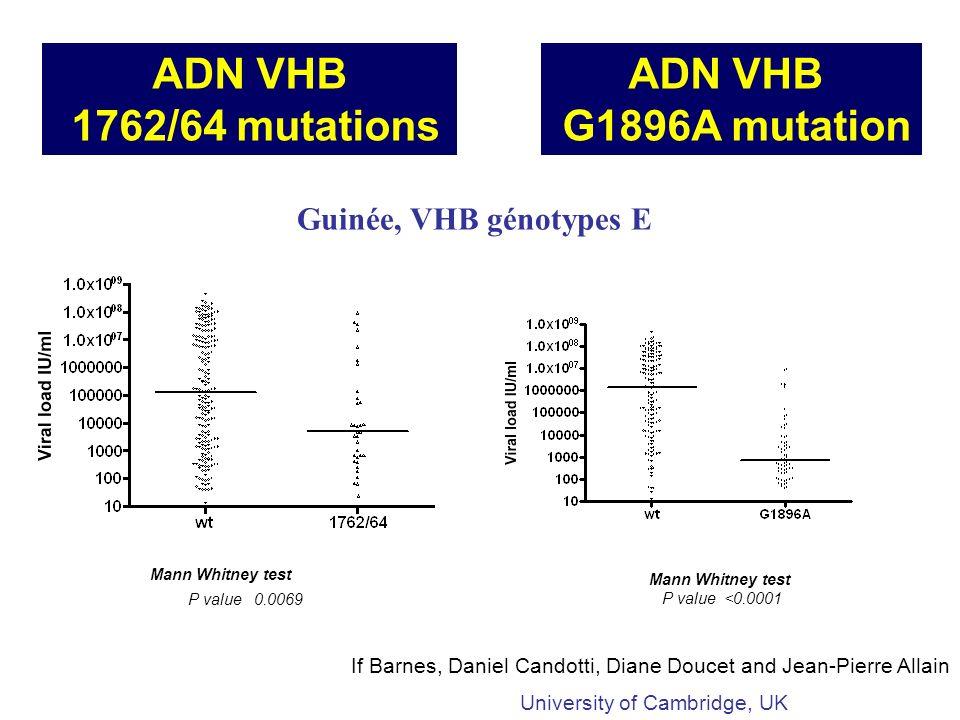 Mann Whitney test P value 0.0069 ADN VHB 1762/64 mutations Guinée, VHB génotypes E If Barnes, Daniel Candotti, Diane Doucet and Jean-Pierre Allain ADN