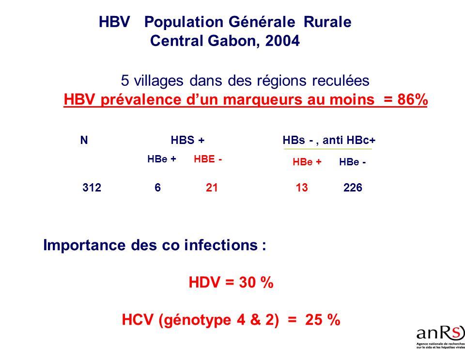 HBV Population Générale Rurale Central Gabon, 2004 Importance des co infections : HDV = 30 % HCV (génotype 4 & 2) = 25 % 312 NHBS + HBe +HBE - 621 HBs