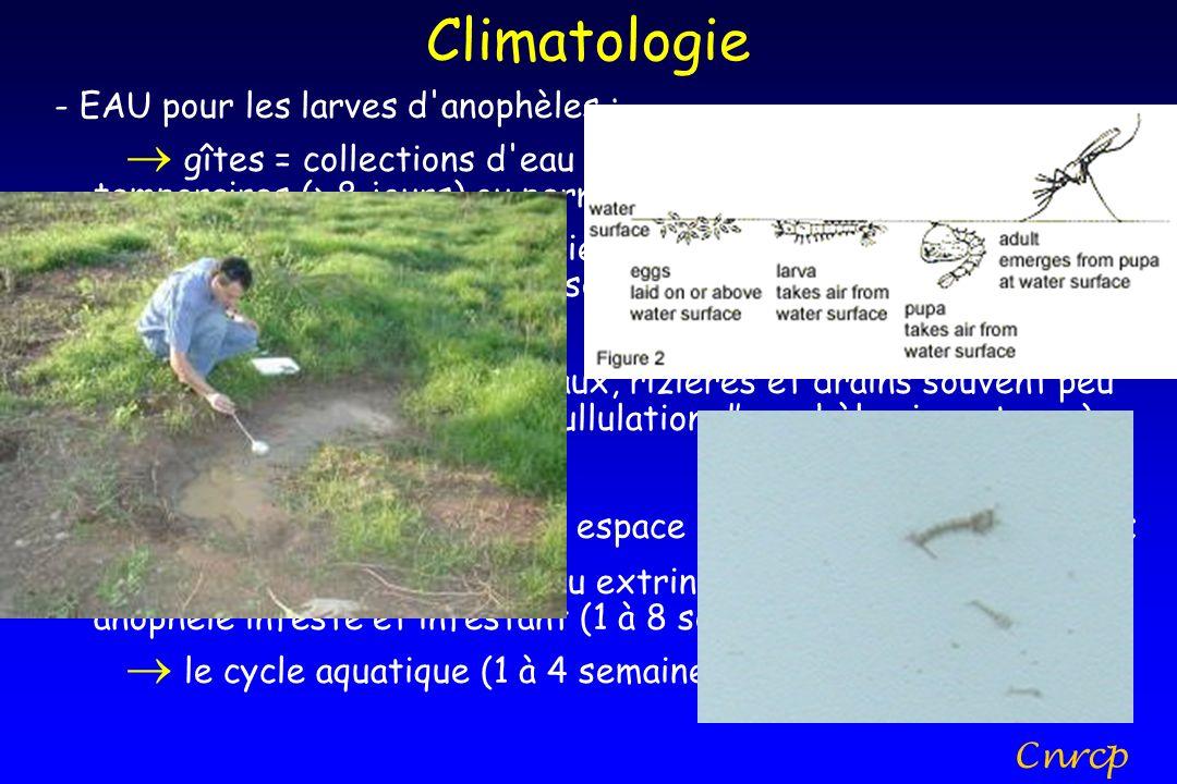 Climatologie - EAU pour les larves d'anophèles : gîtes = collections d'eau calme, herbe, soleil/ombre, temporaires (> 8 jours) ou permanentes ; rôle d