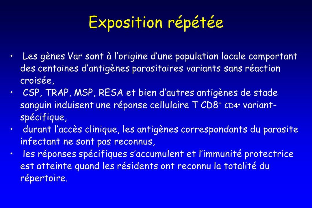 Exposition répétée Les gènes Var sont à lorigine dune population locale comportant des centaines dantigènes parasitaires variants sans réaction croisé