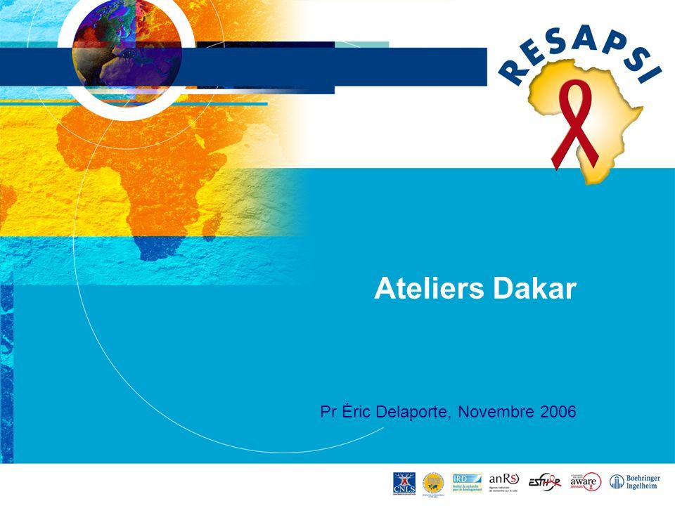 Ateliers Dakar Pr Éric Delaporte, Novembre 2006