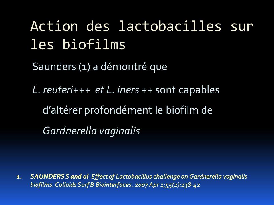 Action des lactobacilles sur les biofilms Saunders (1) a démontré que L. reuteri+++ et L. iners ++ sont capables daltérer profondément le biofilm de G