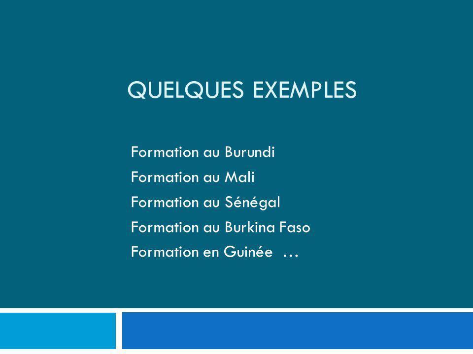 QUELQUES EXEMPLES Formation au Burundi Formation au Mali Formation au Sénégal Formation au Burkina Faso Formation en Guinée …