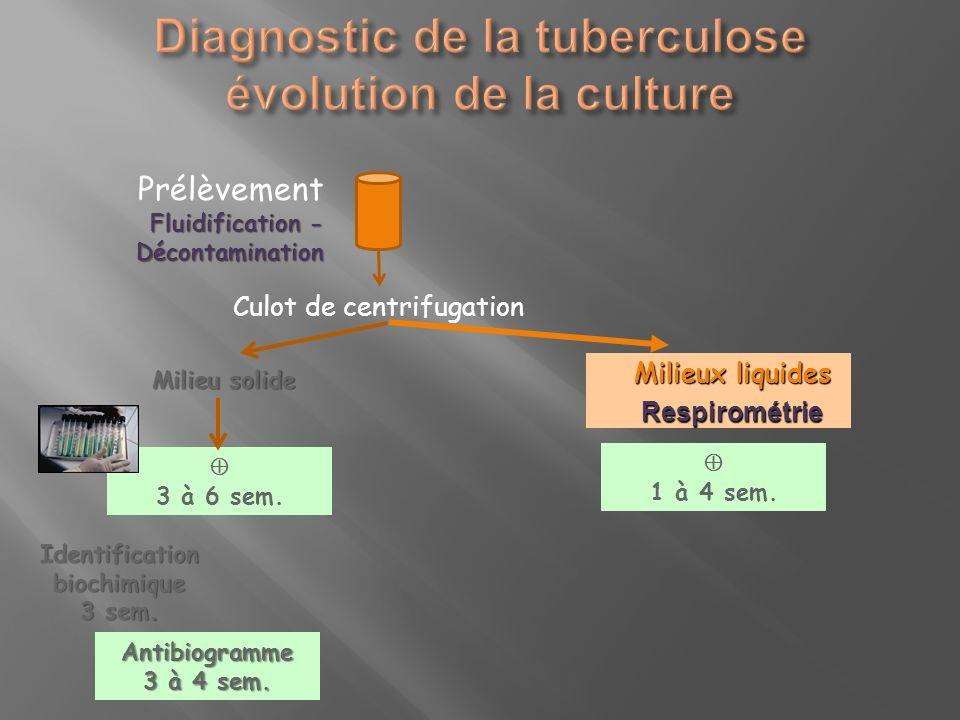 Milieu solide 3 à 6 sem. Identification biochimique 3 sem. Antibiogramme 3 à 4 sem. Prélèvement Fluidification - Décontamination Culot de centrifugati