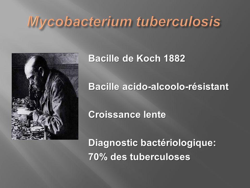 Bacille de Koch 1882 Bacille acido-alcoolo-résistant Croissance lente Diagnostic bactériologique: 70% des tuberculoses