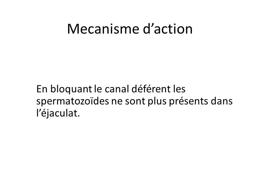 Mecanisme daction En bloquant le canal déférent les spermatozoïdes ne sont plus présents dans léjaculat.