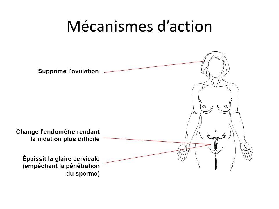Mécanismes daction Supprime l'ovulation Épaissit la glaire cervicale (empêchant la pénétration du sperme) Change l'endomètre rendant la nidation plus