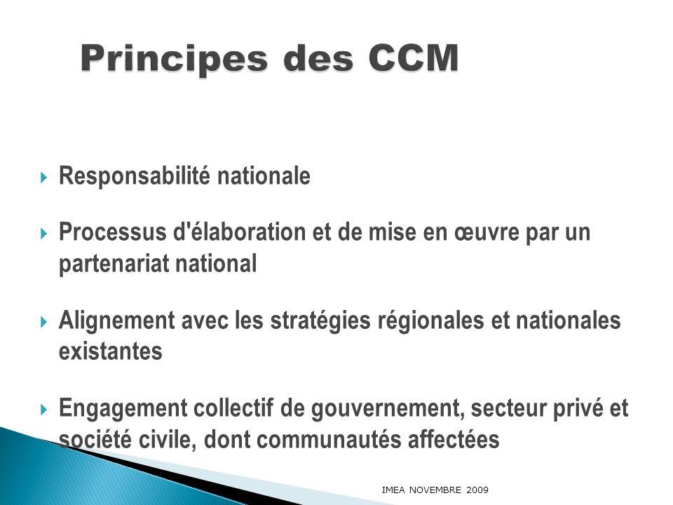 Responsabilité nationale Processus d'élaboration et de mise en œuvre par un partenariat national Alignement avec les stratégies régionales et national