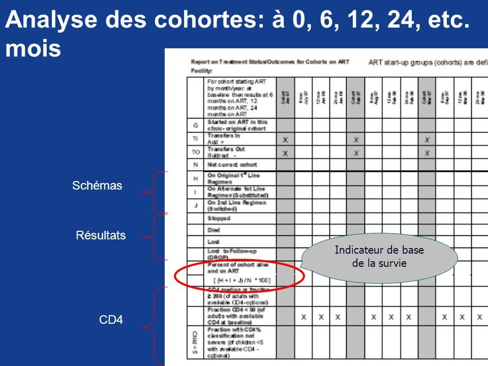 Analyse des cohortes: à 0, 6, 12, 24, etc. mois Indicateur de base de la survie Schémas Résultats CD4