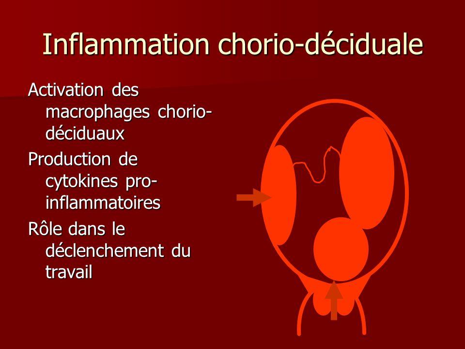 Inflammation chorio-déciduale Activation des macrophages chorio- déciduaux Production de cytokines pro- inflammatoires Rôle dans le déclenchement du t