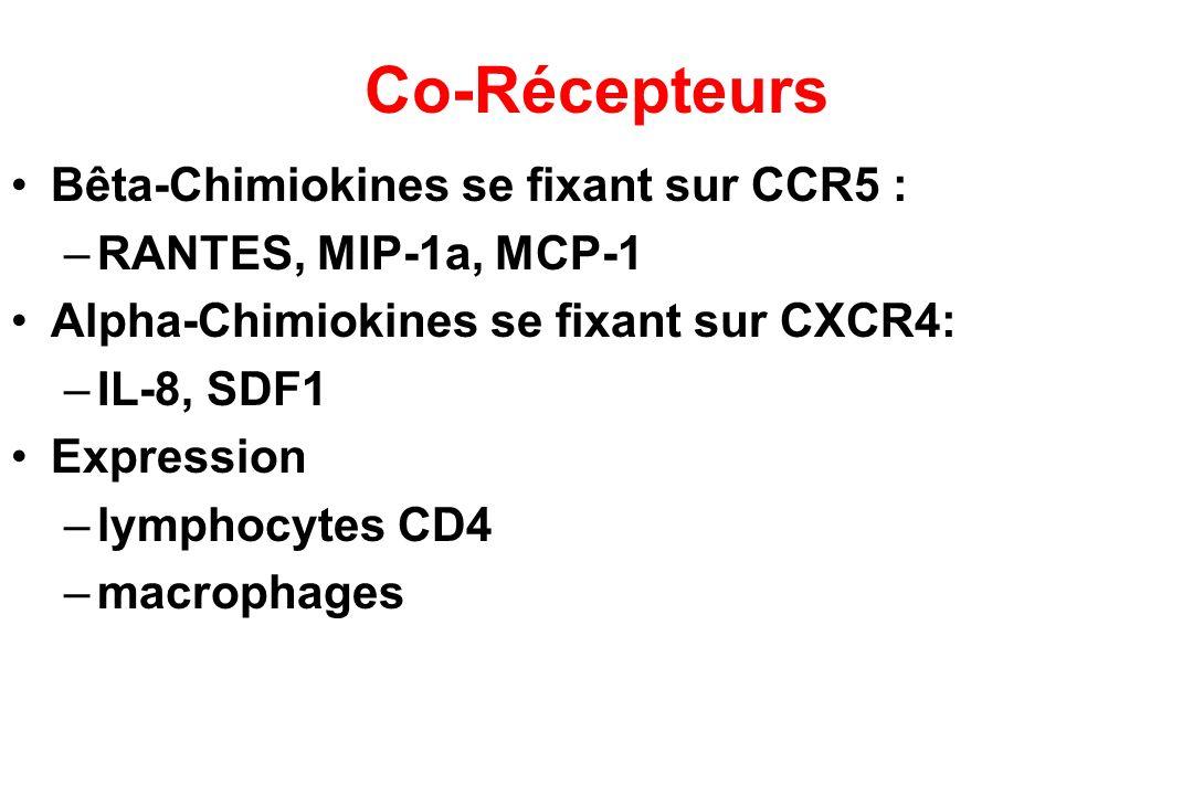 Co-Récepteurs Bêta-Chimiokines se fixant sur CCR5 : –RANTES, MIP-1a, MCP-1 Alpha-Chimiokines se fixant sur CXCR4: –IL-8, SDF1 Expression –lymphocytes CD4 –macrophages