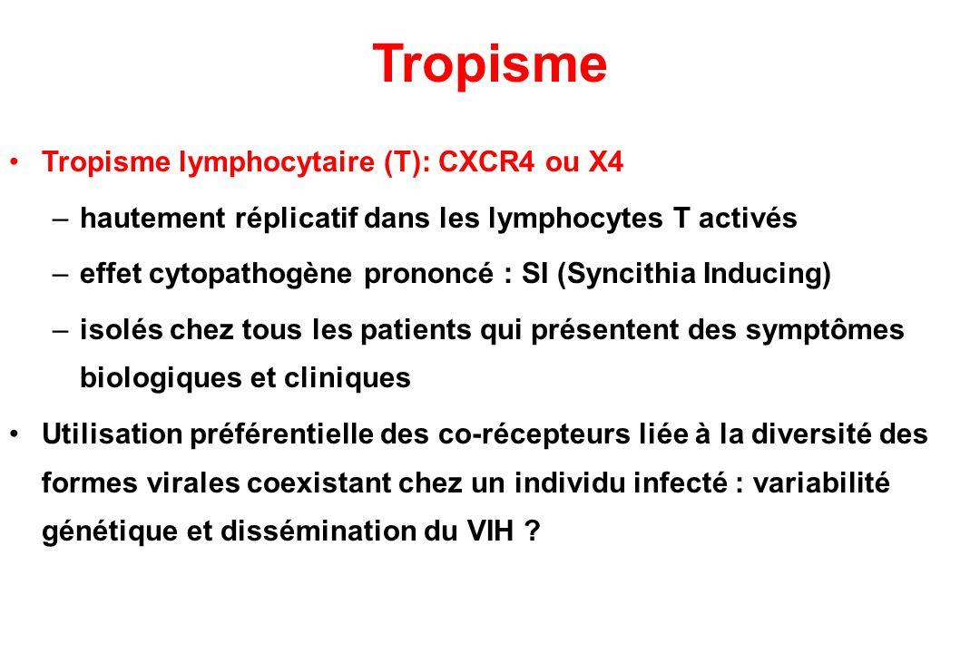 Tropisme Tropisme lymphocytaire (T): CXCR4 ou X4 –hautement réplicatif dans les lymphocytes T activés –effet cytopathogène prononcé : SI (Syncithia Inducing) –isolés chez tous les patients qui présentent des symptômes biologiques et cliniques Utilisation préférentielle des co-récepteurs liée à la diversité des formes virales coexistant chez un individu infecté : variabilité génétique et dissémination du VIH ?