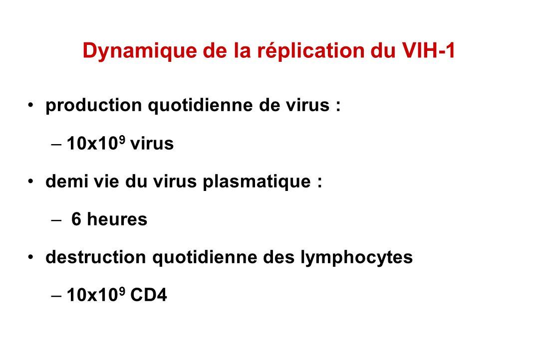 Dynamique de la réplication du VIH-1 production quotidienne de virus : –10x10 9 virus demi vie du virus plasmatique : – 6 heures destruction quotidienne des lymphocytes –10x10 9 CD4