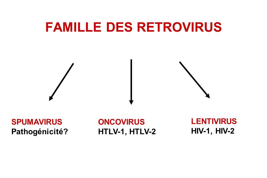 FAMILLE DES RETROVIRUS SPUMAVIRUS Pathogénicité? ONCOVIRUS HTLV-1, HTLV-2 LENTIVIRUS HIV-1, HIV-2