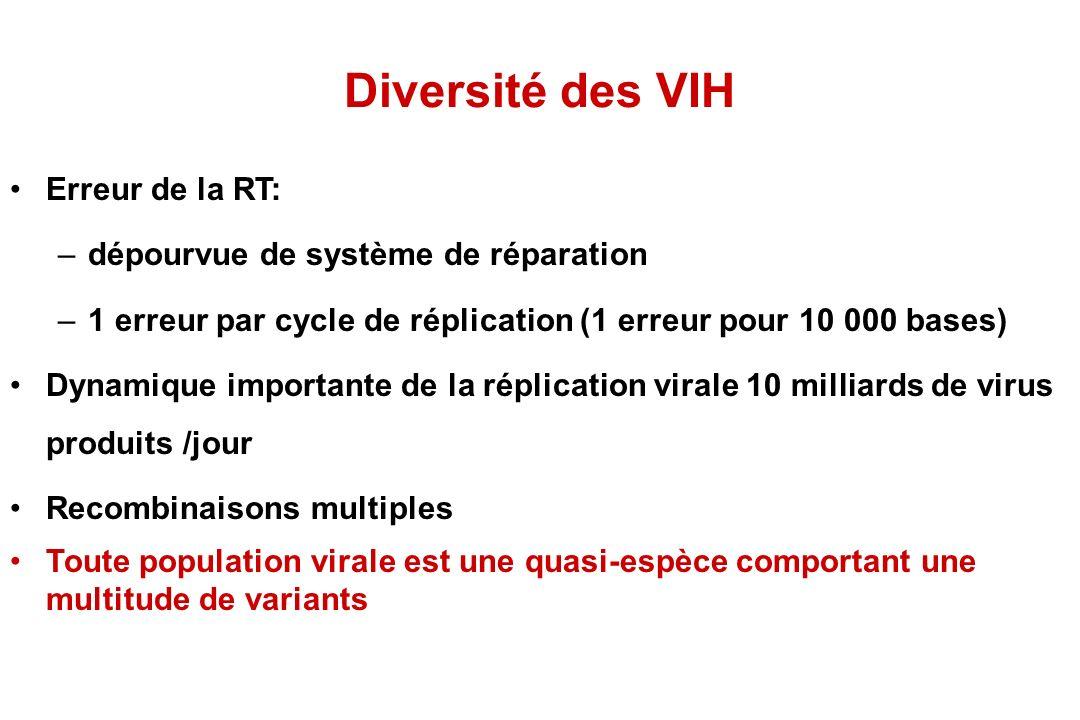 Diversité des VIH Erreur de la RT: –dépourvue de système de réparation –1 erreur par cycle de réplication (1 erreur pour 10 000 bases) Dynamique importante de la réplication virale 10 milliards de virus produits /jour Recombinaisons multiples Toute population virale est une quasi-espèce comportant une multitude de variants
