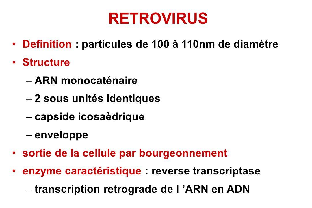 RETROVIRUS Definition : particules de 100 à 110nm de diamètre Structure –ARN monocaténaire –2 sous unités identiques –capside icosaèdrique –enveloppe sortie de la cellule par bourgeonnement enzyme caractéristique : reverse transcriptase –transcription retrograde de l ARN en ADN