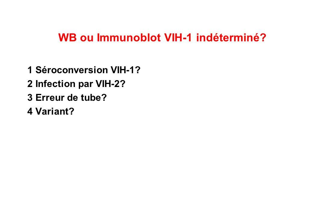WB ou Immunoblot VIH-1 indéterminé.1 Séroconversion VIH-1.